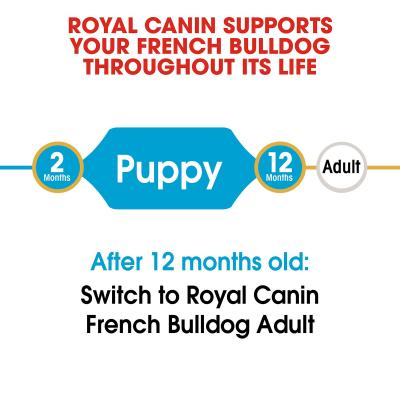 Royal Canin French Bulldog Puppy Dry Dog Food 3kg