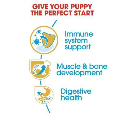 Royal Canin Rottweiler Puppy Dry Dog Food 12kg