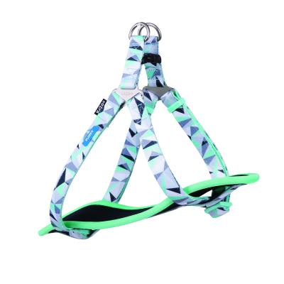 Kazoo Funky Nylon Walking Harness Mint Abstract Medium 53-77cm x 20mm For Dogs