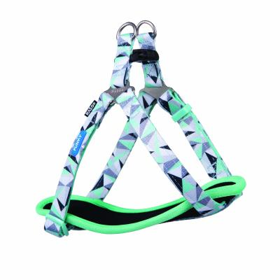 Kazoo Funky Nylon Walking Harness Mint Abstract Small 38-53cm x 15mm For Dogs