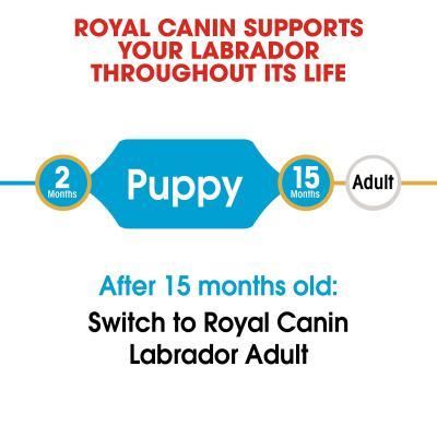 Royal Canin Labrador Puppy/Junior Dry Dog Food 24kg