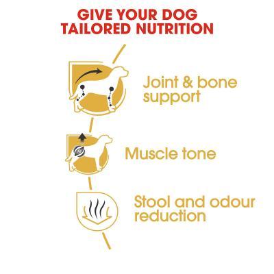 Royal Canin Dachshund Adult Dry Dog Food 7.5kg