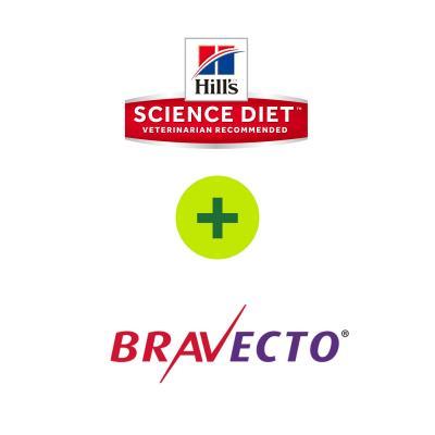 Hills Science Diet Optimal Care Food Plus Bravecto Plus For Cats