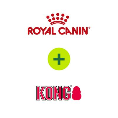 Royal Canin Exigent Savour Food Plus KONG Toys For Cats
