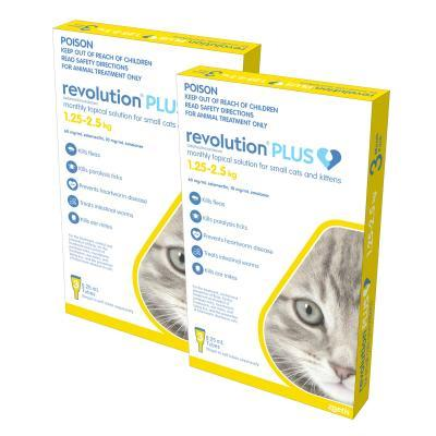 Revolution Plus For Kittens And Small Cats 1.25-2.5kg 6 Pack
