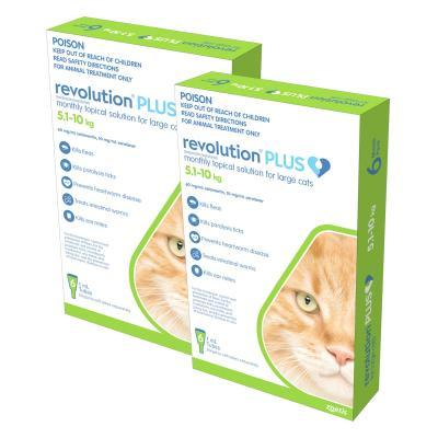 Revolution Plus For Large Cats 5-10kg 12 Pack