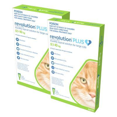 Revolution Plus For Large Cats 5-10kg 9 Pack