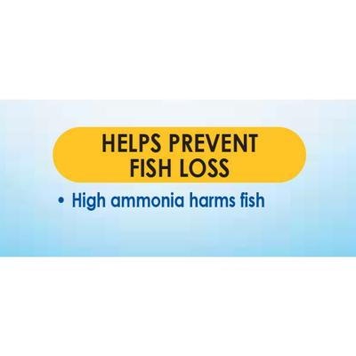 API Ammonia Test Kit For Fish Aquarium