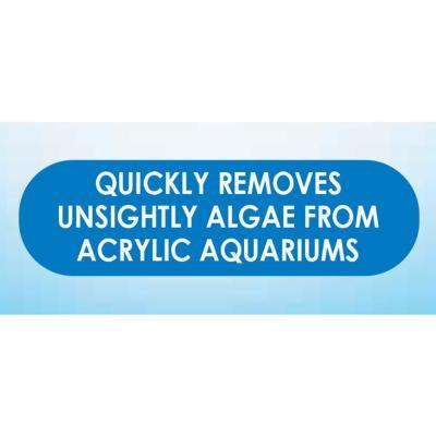 API Hand Held Algae Pad For Glass Fish Aquarium