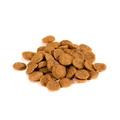 Wishbone Ocean Salmon Grain Free Dry Dog Food 5.44kg