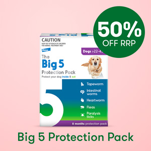 The Big 5 Protection Pack