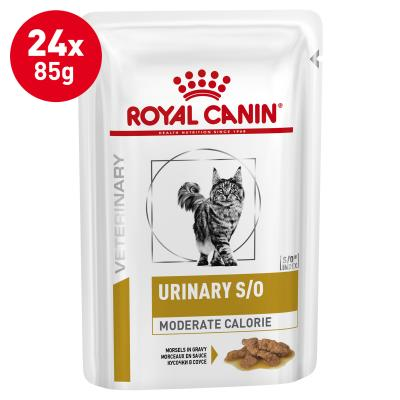 Royal Canin Veterinary Diet Feline S/O Urinary Moderate Calorie Pouch Wet Cat Food 85gm x 24