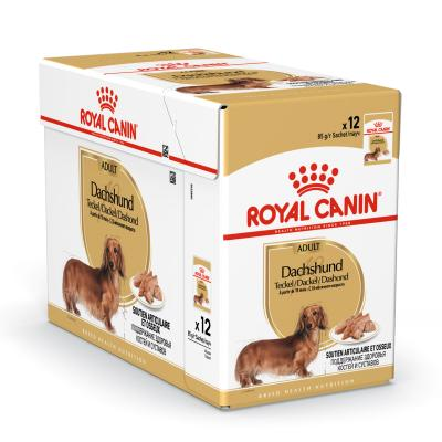 Royal Canin Bundle Dachshund Adult Wet And Dry Dog Food