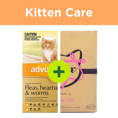 Advocate Kitten Plus Minx Litter For Cats