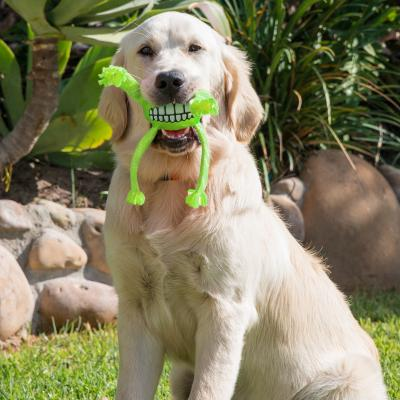 Rogz Flossy Grinz Squeak Lime Medium Toy For Dogs