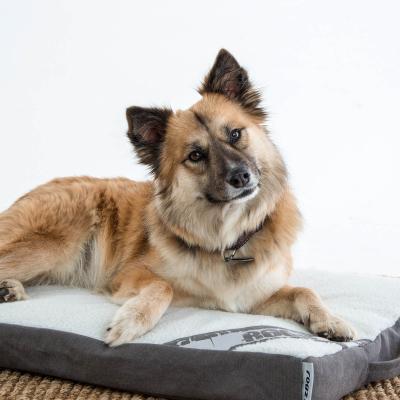 Rogz Flat Mattress Lounge Podz Brown Grey Medium Bed For Dogs
