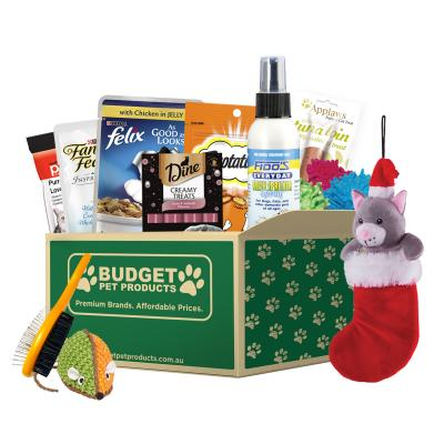 Christmas Surprise Box Toys And Treats For Cats