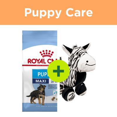 Royal Canin Puppy Food Plus KONG Toys For Dogs