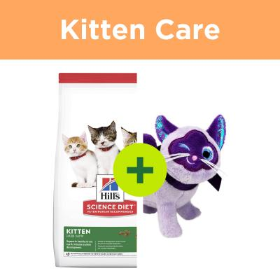 Hills Science Diet Kitten Food Plus KONG Toys For Cats