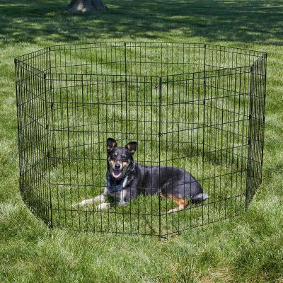 Metal Exercise Activity Pen For Dogs 36 Inch 90cm Height