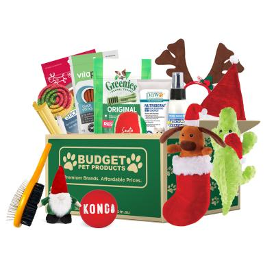 Christmas Surprise Box Toys And Treats For Dogs