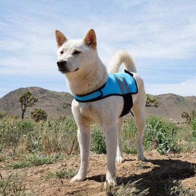 Zippy Paws Cooling Reflective Vest Coat Blue Medium (Girth Size: 58-81cm) For Dogs