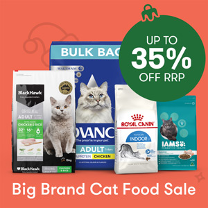 Big Brand Cat Food Sale