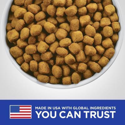 Hills Prescription Diet Feline t/d Dental Care Chicken Dry Cat Food 6kg