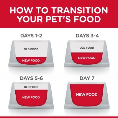 Hills Science Diet Tender Chicken Dinner Kitten Pouches Wet Cat Food 85gm x 12 (11093LG)
