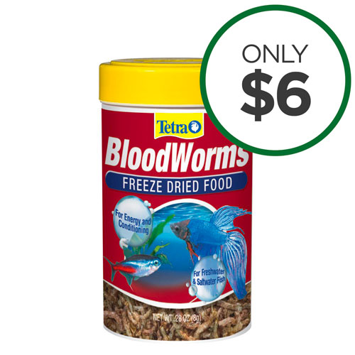 Dried Bloodworms