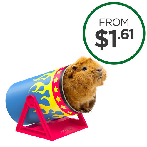 Shop All Small Animal Products
