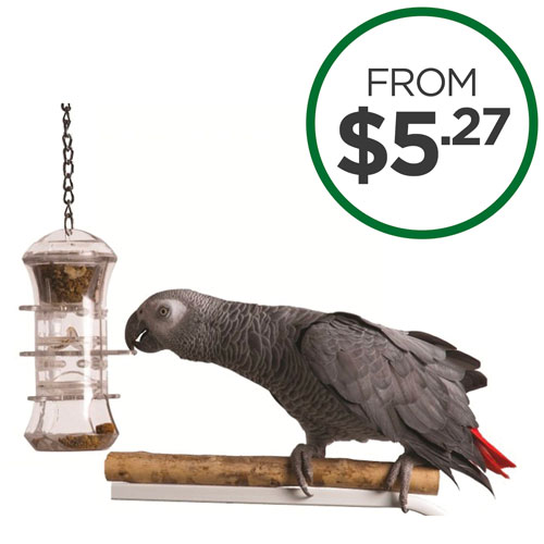 Shop All Bird Products