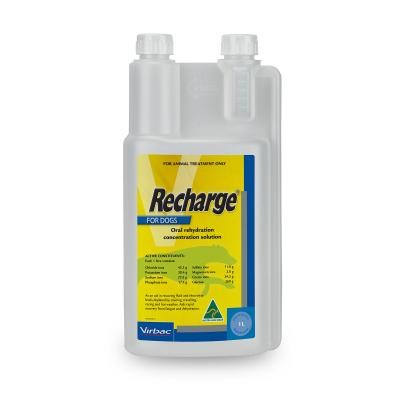 Recharge For Dogs 1Litre