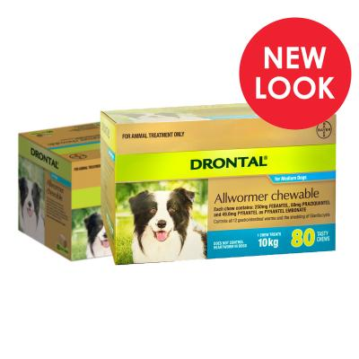 Drontal Allwormer For Dogs Medium 3-10kg 80 Chews