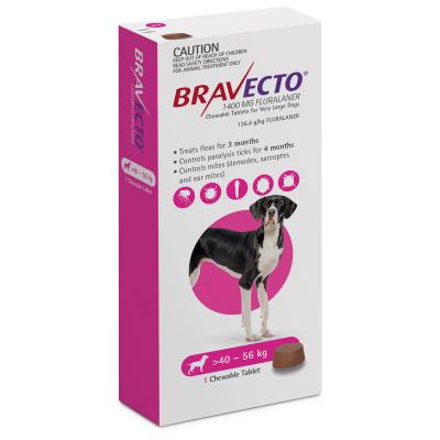 Bravecto Single Chew Plus Premium Large Breed Food For Dogs