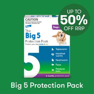 Big 5 Protection Pack