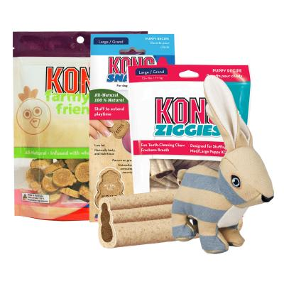 Easter Treatster KONG Bunny Toy And Treats Puppy Pack For Medium-Large Dogs