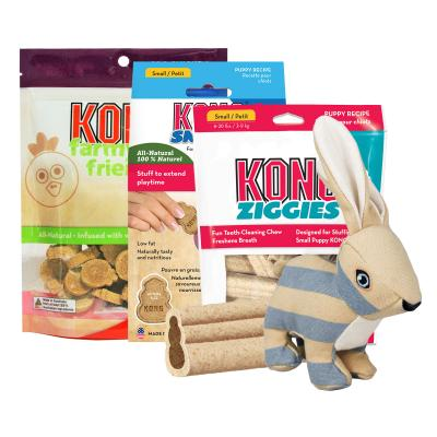 Easter Treatster KONG Bunny Toy And Treats Puppy Pack For Small-Medium Dogs