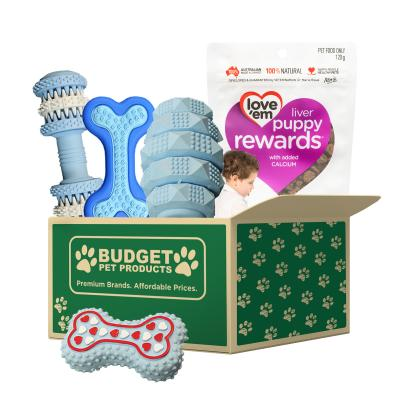 Welcome To The Family Puppy Gift Box Blue For Dogs