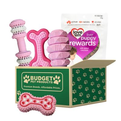 Welcome To The Family Puppy Gift Box Pink For Dogs