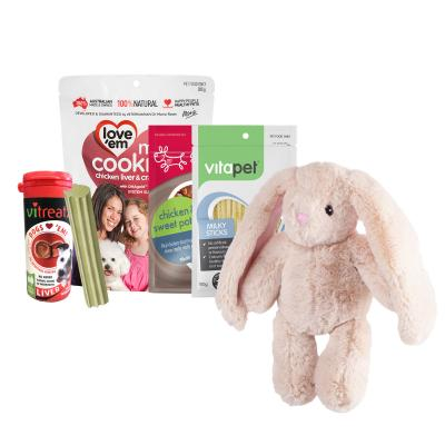 Easter Treatster Kazoo Snuggle Bunny Toy And Treats Pack For Dogs