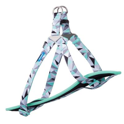 Kazoo Funky Nylon Walking Harness Mint Abstract Large/XLarge 77-99cm x 25mm For Dogs