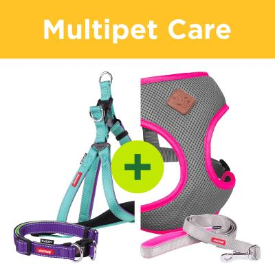 Multipet Plus - Kazoo Collars Leads And Harnesses For Multi Dog Households