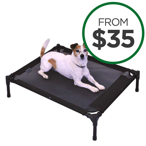 FlashPet Trampoline Beds
