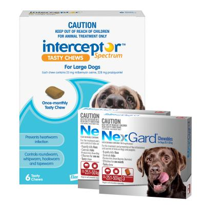 NexGard For Dogs Large 25.1-50kg Red With Interceptor Spectrum For Dogs 22-45kg Blue 6 Chews