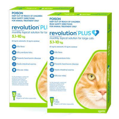 Revolution Plus For Large Cats 5-10kg 4 Pack