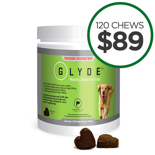 Glyde Chews & Powder