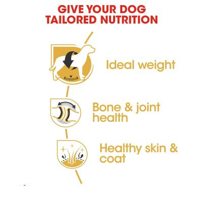 Royal Canin Labrador Adult Dry Dog Food 36kg