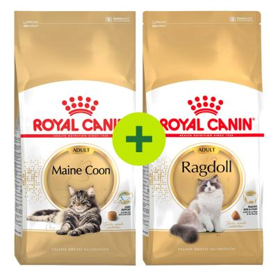 Royal Canin Breed Specific Dry Food For Cats Plus Free Gift