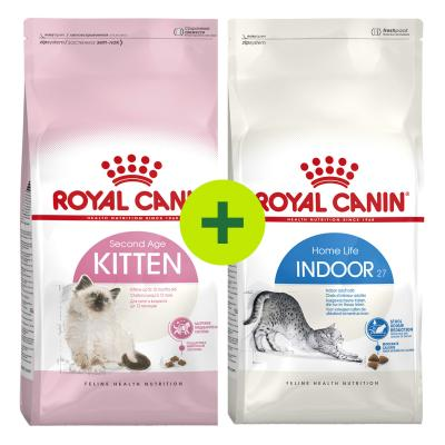 Royal Canin Dry Food For Kitten And Adult Cats Plus Free Gift